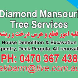 Diamond Mansouri Renovation &  Tree Services.jpg