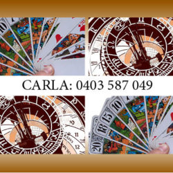 Carla-coffee & Taroot.jpg